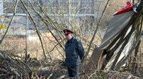 Śledczy ujawnili opinię o metalu z brzozy w Smoleńsku