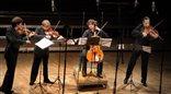 Getynga, Norymberga, Drezno i Wiedeń, czyli... Apollon Musagte Quartett