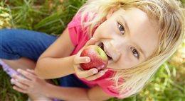 Polifenole - klucz do zdrowia i młodości