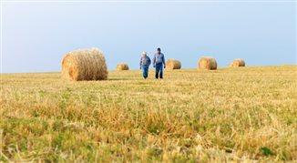 32 mld euro z UE na polskie rolnictwo. Kto może liczyć na wsparcie?