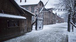Obóz Auschwitz - Birkenau 70 lat po wyzwoleniu