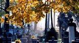 Dzień Wszystkich Świętych: jak tanio i efektownie ozdobić groby bliskich