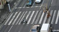 Mamy najbardziej niebezpieczne przejścia dla pieszych w Europie