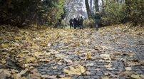 Jesienna melancholia w warszawskich Łazienkach Królewskich
