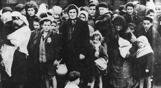 Oskarżam Auschwitz - opowieści ocalałych Żydów