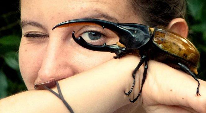 Odkrywanie niezwykłych zwierząt na drugim końcu świata