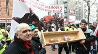 Rolnicy manifestują przed Ministerstwem Rolnictwa