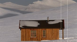 Polka na Spitsbergenie