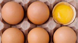 Naukowcy wiedzą, jak odgotować jajka