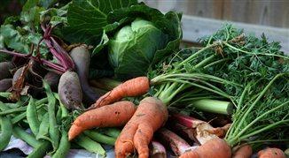 Ceny warzyw stabilne. Jest taniej niż rok temu