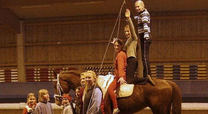 Woltyżerka - miks tańca, gimnastyki i jazdy konnej