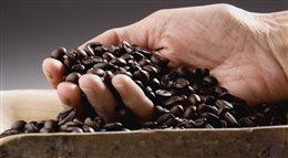 Kawa uzależnia, psuje zęby i pobudza tylko na chwilę