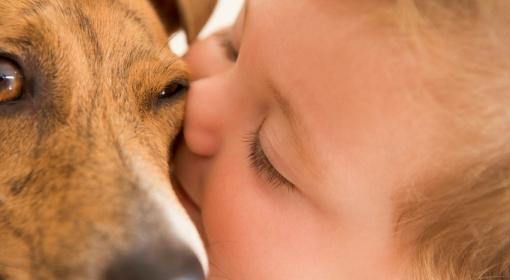 Psia miłość czyni cuda