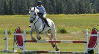 Polskie konie arabskie wracają z Paryża ze złotymi medalami