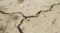 Nowa Zelandia: silne trzęsienie ziemi postraszyło mieszkańców stolicy