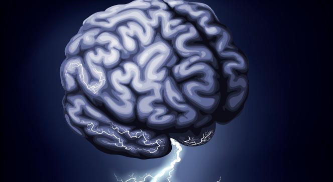 Dwujęzyczność ochroni mózg na starość