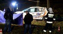Zarzuty dla sprawcy wypadku w Wielkopolsce