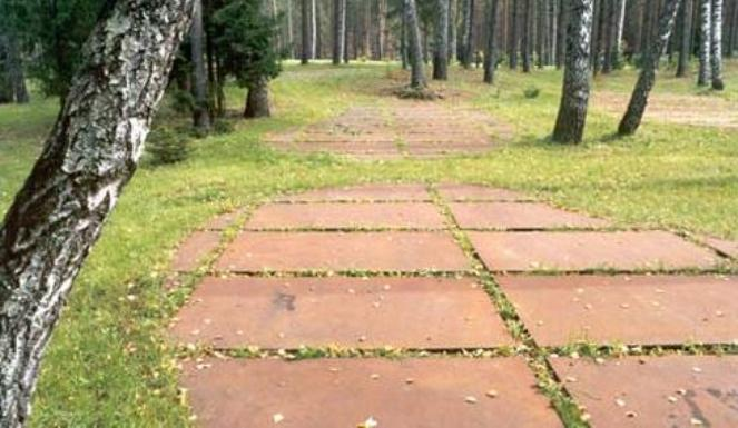 Masowe groby zamordowanych oficerów w Lesie Katyńskim