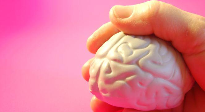 Odpoczynek mózgu to podstawa naszego funkcjonowania, foto: sxc.hu