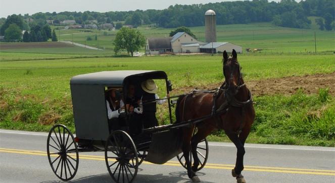 Tradycyjna dorożka, jakimi poruszają się niekorzystający z udogodnień współczesnej cywilizacji Amisze