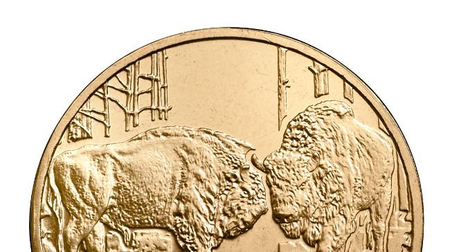 Nowa 2-złotowa monet NBP dla kolekcjonerów