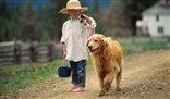 Z psem u fryzjera. Trzeba być cierpliwym i konsekwentnym jak z dzieckiem
