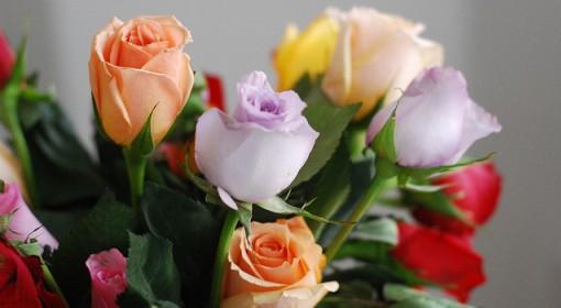 Polscy floryści i florystyka