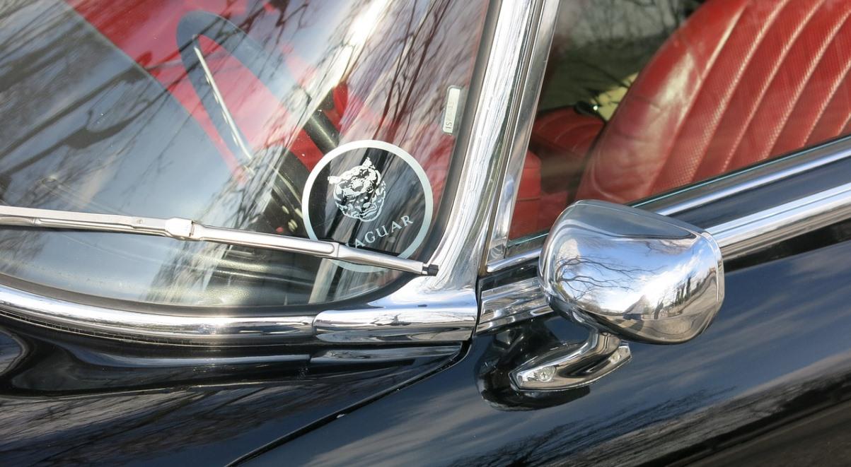 jaguar 1200.jpg
