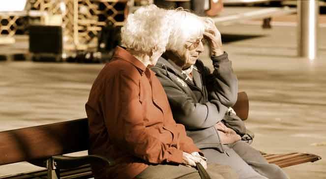 Zmiany w systemie emerytalnym: do ZUS-u trafią składki z OFE